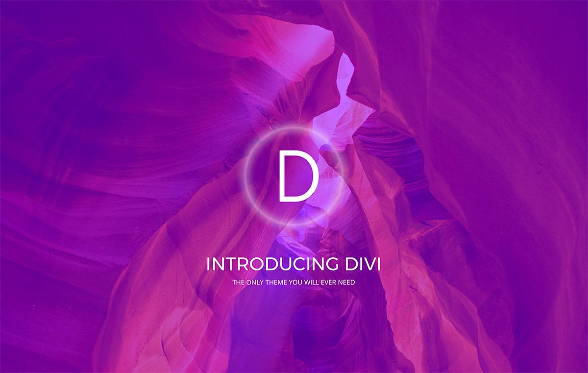 Divi theme at low price